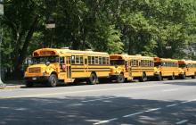 Típicos autobuses amarillos